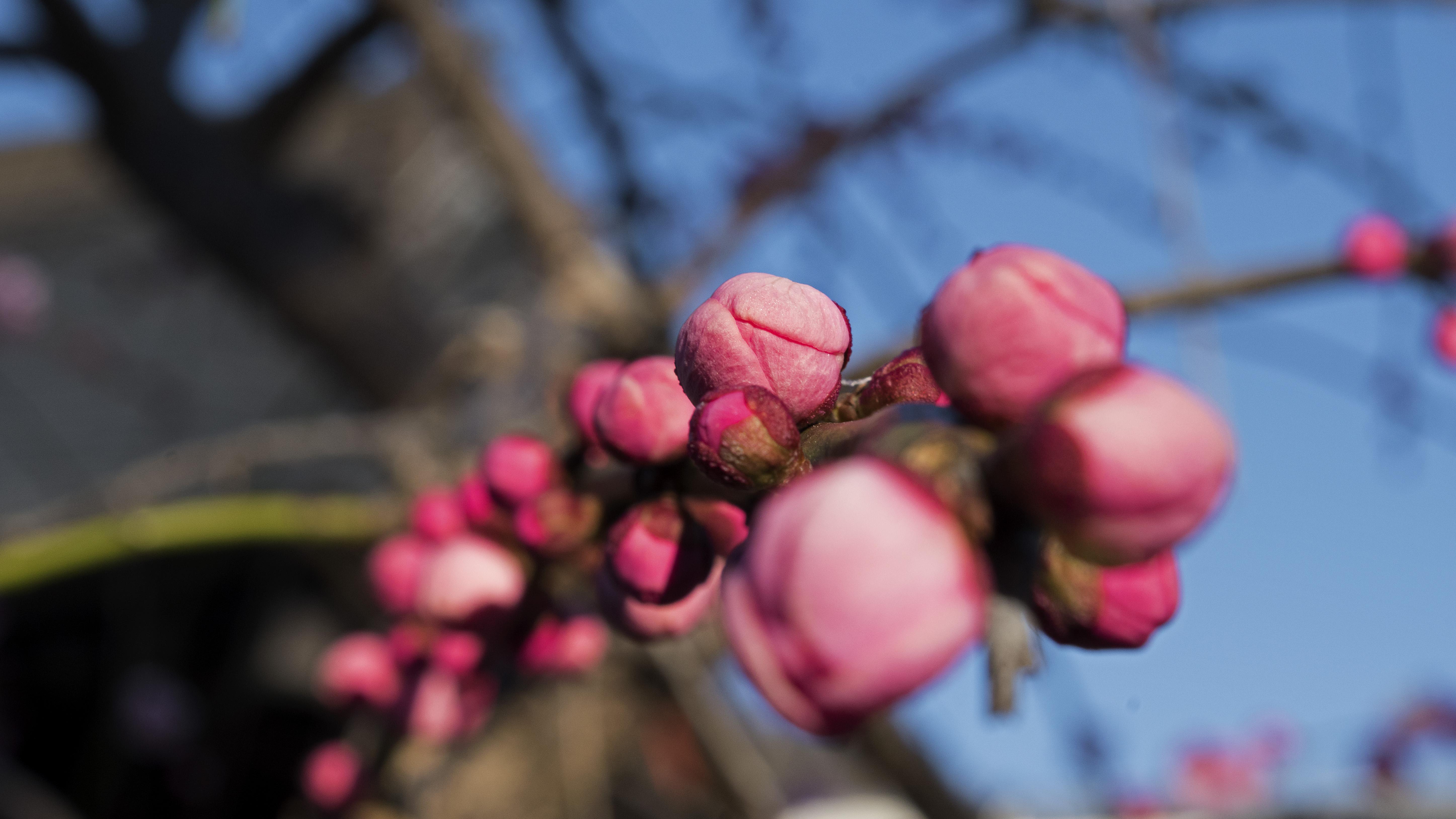 March 1_Walk-001_jpeg