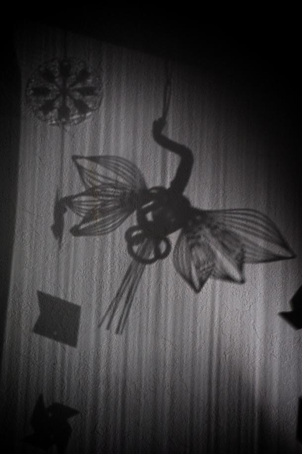 crane_shadow
