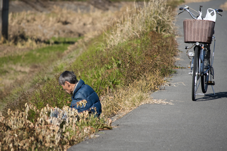 2017_12_01_Nigorigawa-003